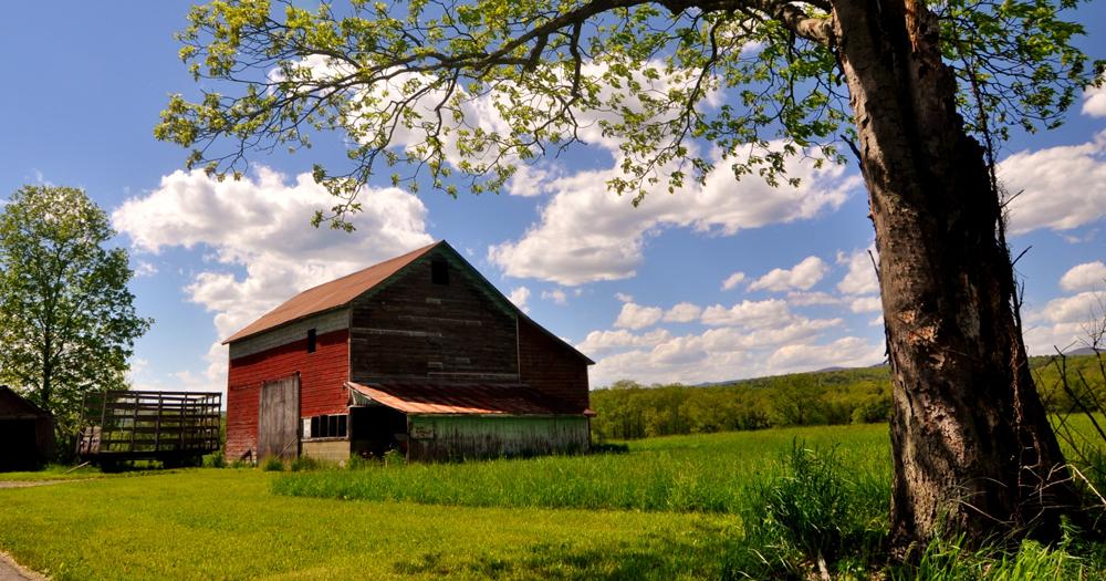 Red barn in field in ellenville