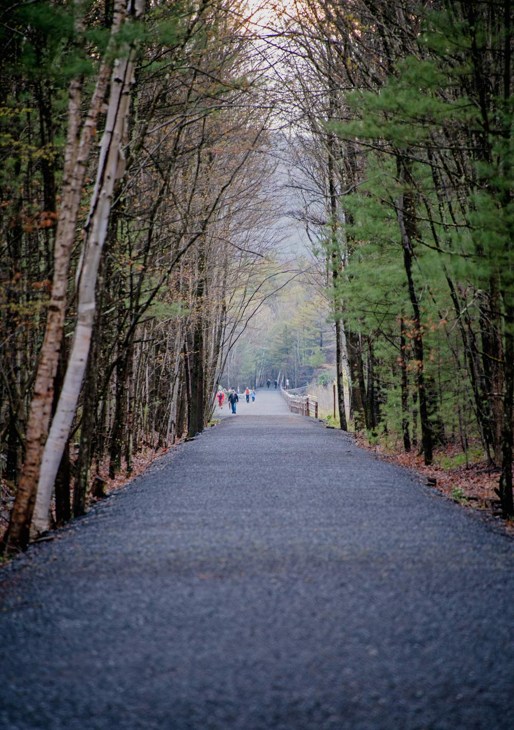 Detailed image of Rail trail pathway