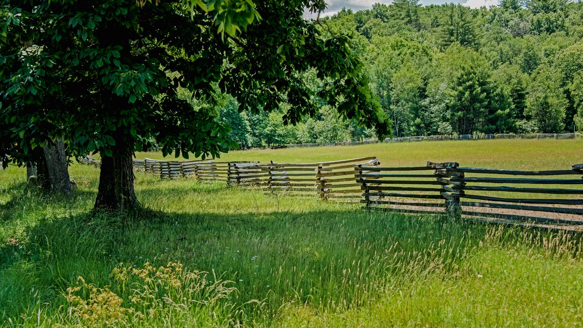 Open field with fence