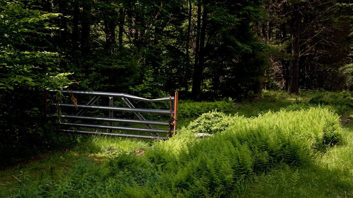 fence in open field