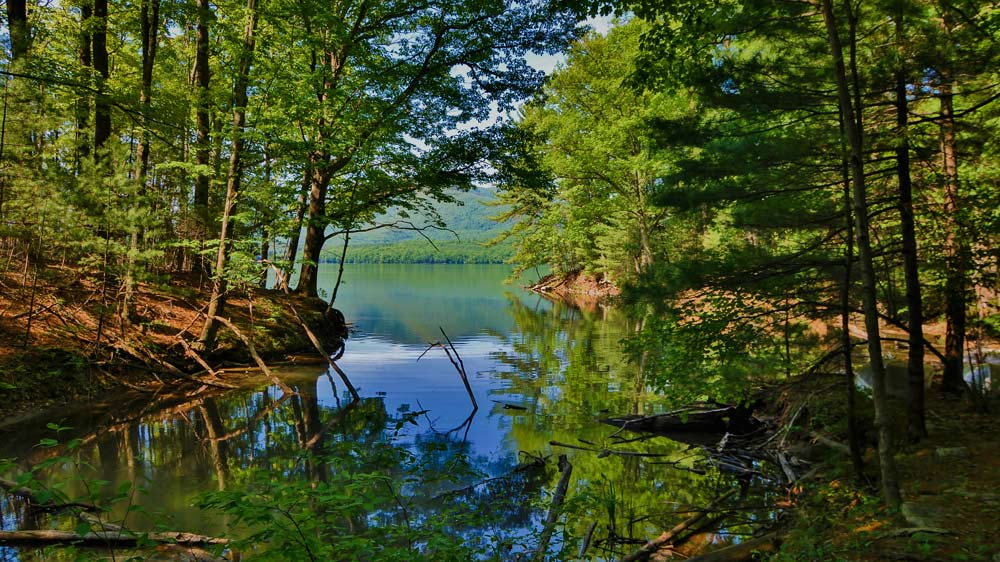 Small secluded wooded area in West Hurley