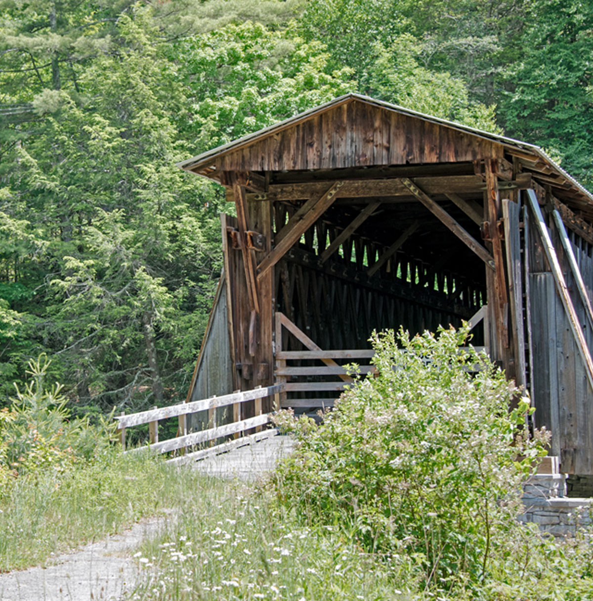 Bridge in Willow