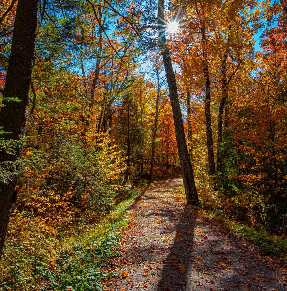 Wallkill Rail Trail in Autumn